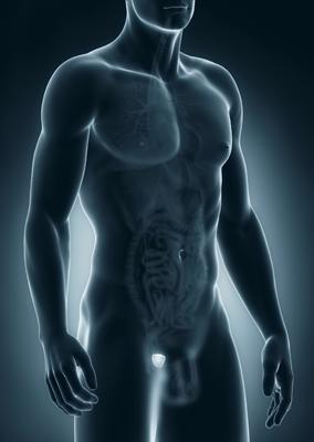 entrada_prostata